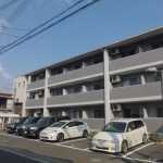 N1.SHIMAGASHIRA